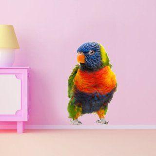 WSD183   Große Regenbogen Papagei Foto Tier Wandtattoos. Jungle Wandaufkleber, Tierbild Abziehbild. schälen und Stick Wandtattoos von Art Fever TM UK: Küche & Haushalt