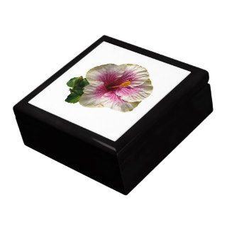 Hibiscus Candy Striper Gift Boxes