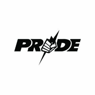 "(2x) 5"" Pride MMA UFC Logo Sticker Vinyl Decals: Automotive"