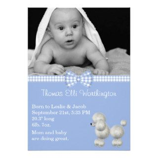 Blue & White Poodle Baby Boy Birth Announcement