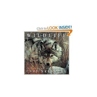 Wildlife: The Nature Paintings of Carl Brenders: Carl Brenders: 9780810939776: Books