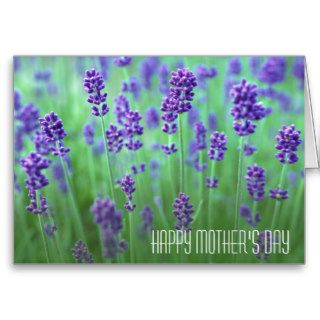 Lavender Field, Mother's Day Greeting Card