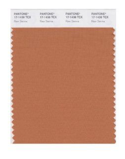 PANTONE SMART 17 1436X Color Swatch Card, Raw Sienna   House Paint