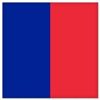"Paris City Flag car bumper sticker window decal 5"" x 5"" Automotive"