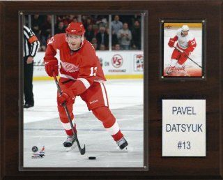 NHL Pavel Datsyuk Detroit Red Wings Player Plaque : Sports Fan Decorative Plaques : Sports & Outdoors