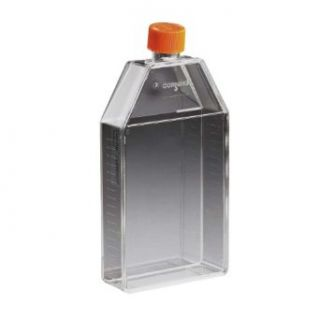 Corning 430639 Polystyrene 10mL Rectangular Canted Neck Cell Culture Flask with Orange HDPE Vent Cap (Case of 200): Science Lab Cell Culture Flasks: Industrial & Scientific