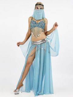 Sexy Belly Dancer Costume   LARGE: Clothing