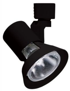 Juno Lighting Group R531BL Flared Gimbal PAR Trac Track Head