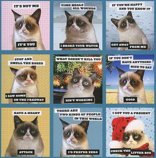 Grumpy Cat 2014 Wall Calendar