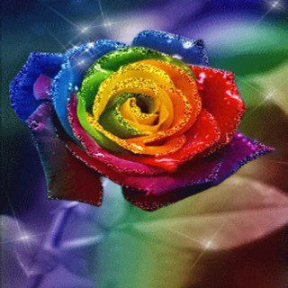 Rainbows Roses Live Wallpaper: Appstore for Android