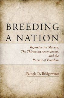 Breeding a Nation: Reproductive Slavery, the Thirteenth Amendment, and the Pursuit of Freedom: Pamela D. Bridgewater: 9780896087781: Books
