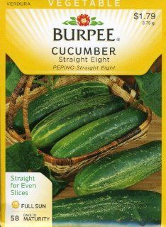 Burpee 56580 Cucumber Straight Eight Seed Packet  Vegetable Plants  Patio, Lawn & Garden