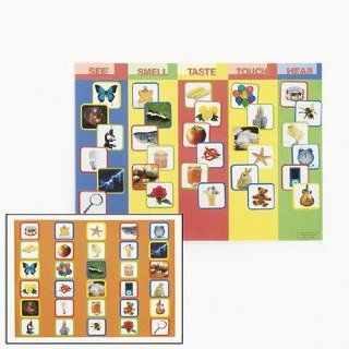 Five Fun Senses Make A Sticker Scenes   Curriculum Projects & Activities & Human Body