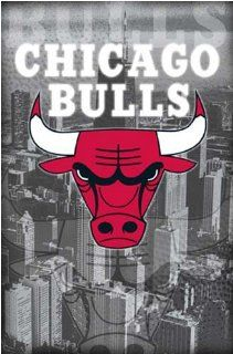 Chicago Bulls Logo Poster (3636)   Prints
