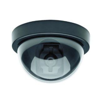 C2124DM Indoor/Outdoor Fake Dummy Security Camera Without LED Light : Camera & Photo
