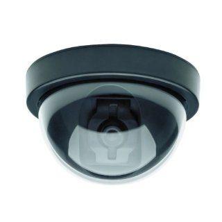 C2124DM Indoor/Outdoor Fake Dummy Security Camera Without LED Light : Camera & Photo