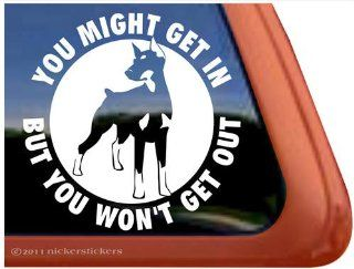 You Might Get In, But You Won't Get Out ~ Doberman Pinscher Dog Vinyl Window Decal Sticker: Automotive