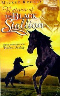 Return of the BLACK STALLION   Clamshell: Richard Ian Cox, Marianne Filali Mickey Rooney, Nicholas Kendall, Jacques Methe, Boudjemaa Dahmane Steven Denore: Movies & TV