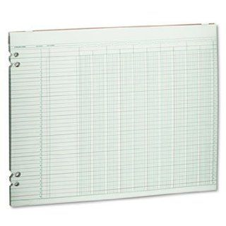 Accounting Sheets, 10 Columns, 11 x 14, 100 Loose Sheets/Pack, Green by WILSON JONES (Catalog Category: Forms, Record Keeping & Reference / Forms): Office Products