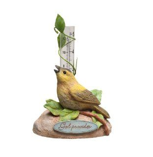 Evergreen Enterprises God Provides Bird Rain Gauge: Sports & Outdoors