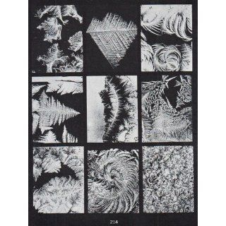 Snow Crystals (Dover Pictorial Archive) W. A. Bentley, W. J. Humphreys 9780486202877 Books