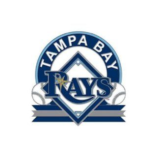 TAMPA BAY RAYS OFFICIAL LOGO SILVER LAPEL PIN : Sports Related Pins : Sports & Outdoors