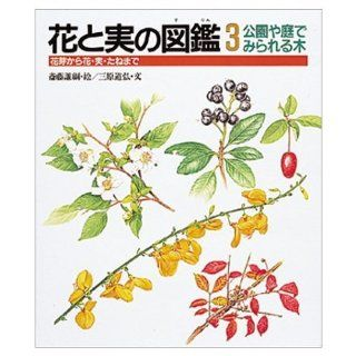 (Picture book of real and flower) to flower, fruit, seed from the tree flower bud seen in parks and gardens (1992) ISBN: 4039710304 [Japanese Import]: Mihara Michihiro: 9784039710307: Books