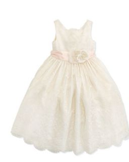 Embroidered Silk Organza Dress, 2T 3T   Ralph Lauren Childrenswear
