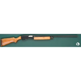 Roebuck Model 200 Shotgun