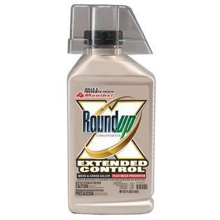 Roundup Concentrate Extended Control Weed & Grass Killer Plus Weed