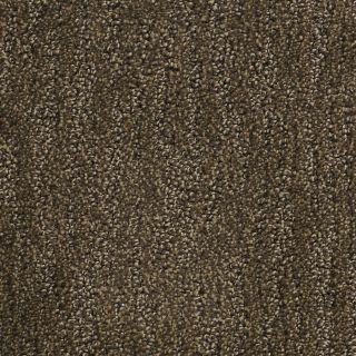 Dixie Group PetProtect Vertigo Brown/Tan Cut and Loop Indoor Carpet