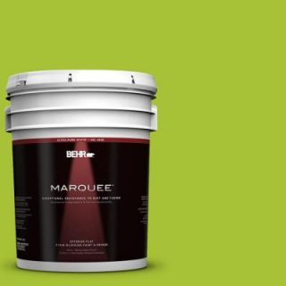 BEHR MARQUEE 5 gal. #S G 410 Green Crush Flat Exterior Paint 445305