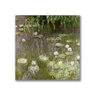 Trademark Fine Art 24 in. x 24 in. Waterlilies at Midday Canvas Art BL0820 C2424GG