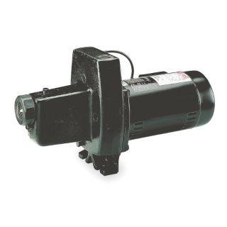 DAYTON 1 1/2 HP Cast Iron Shallow Well Jet Pump   4TB15|4TB15   Grainger