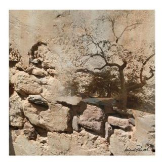 Trademark Fine Art 14 in. x 14 in. Rock and Tree Canvas Art MP0021 C1414GG