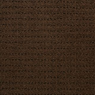 STAINMASTER Active Family Royal Livingstone Brown Level Loop Pile Indoor Carpet