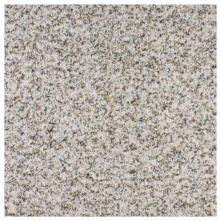 STAINMASTER Active Family Calming Inspriation Civic Textured Indoor Carpet