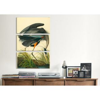 iCanvas John James Audubon Great Blue Heron 3 Piece on Wrapped Canvas