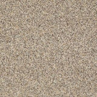 Home Decorators Collection Biggest Moment III (J)   Color Aztec Jewel 12 ft. Carpet HDD3030140