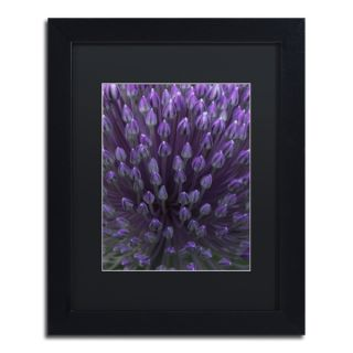 Kurt Shaffer Alien Flower Pods Framed Matted Art   16976560