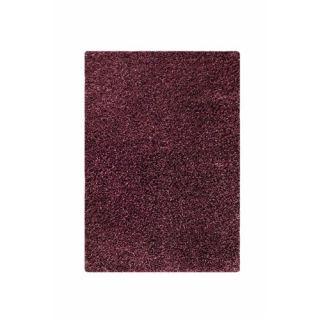 Hirsute Purple Solid Area Rug by Hokku Designs